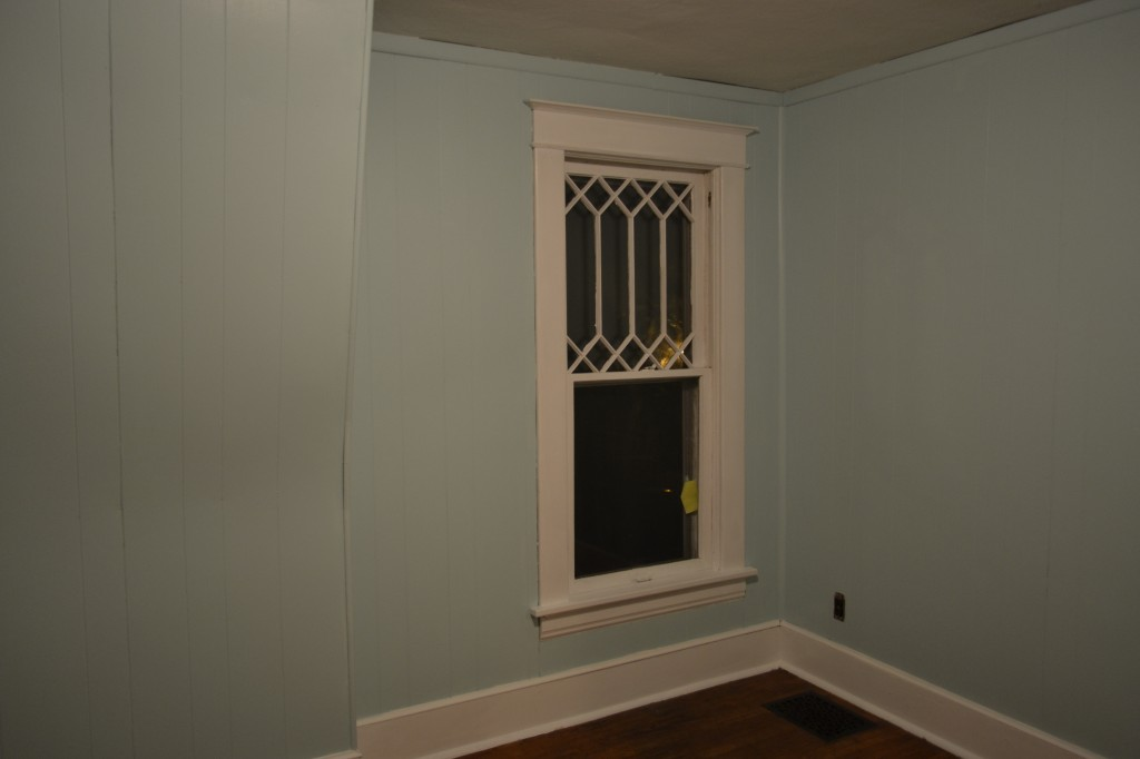 blue painted paneling, white trim, and muntins